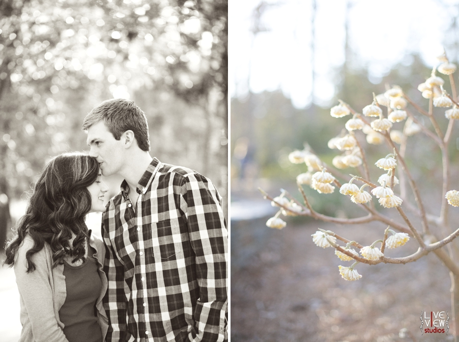 vintage engagement photographers, beautiful flowers at duke gardens in nc