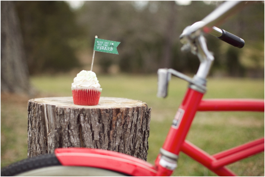 wizard of oz inspired photography, vintage red bicycle