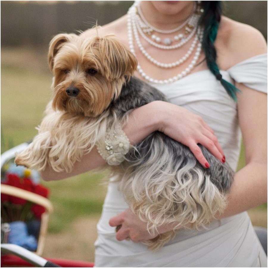 dog in wedding, raleigh nc wedding photographers