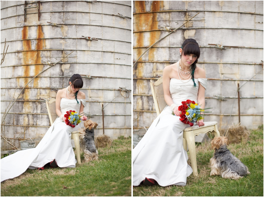 bride and her pet dog, country bridal portraits