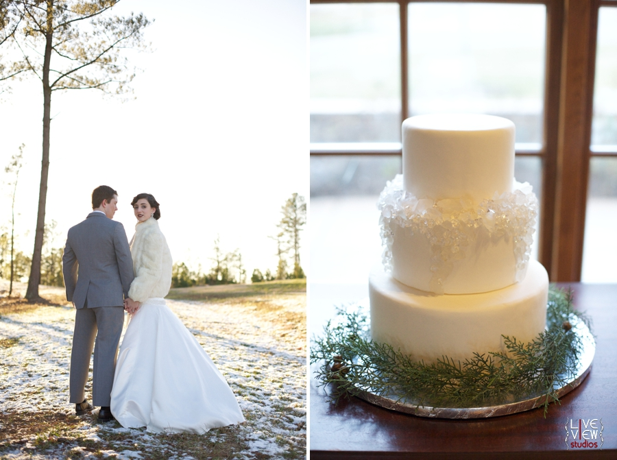 beautiful winter wedding portraits, winter themed wedding cake by linacucina, raleigh nc wedding photographers