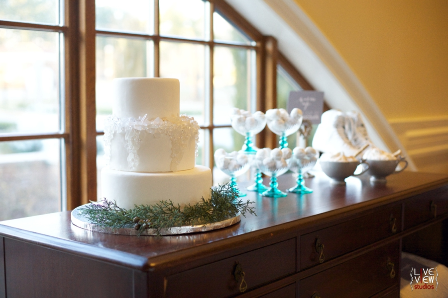 winter inspired wedding reception, raleigh nc wedding photographers