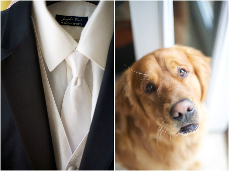 groom's suit from men's wearhouse, north carolina pet photography