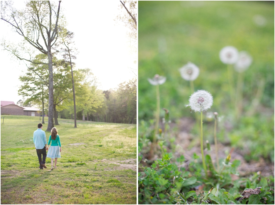 springtime engagement photography, dandelions