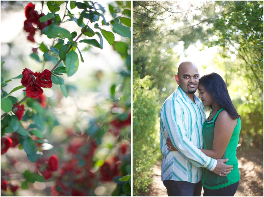 beautiful red roses, southern engagement photographers