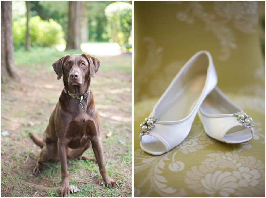 Raleigh Nc Pet Photography Bride S White Ballet Slippers Southern Wedding Photographers