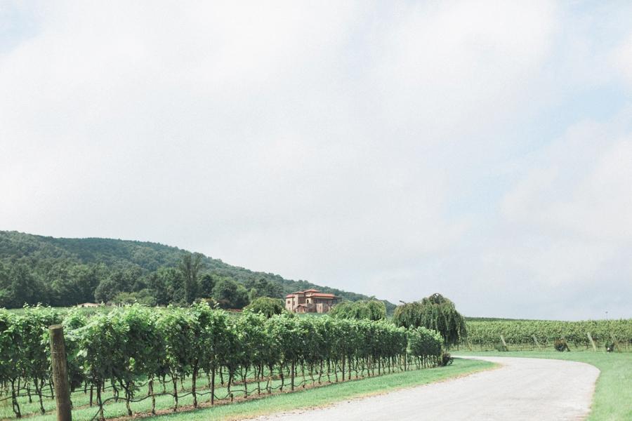 italian villa vineyard wedding photography