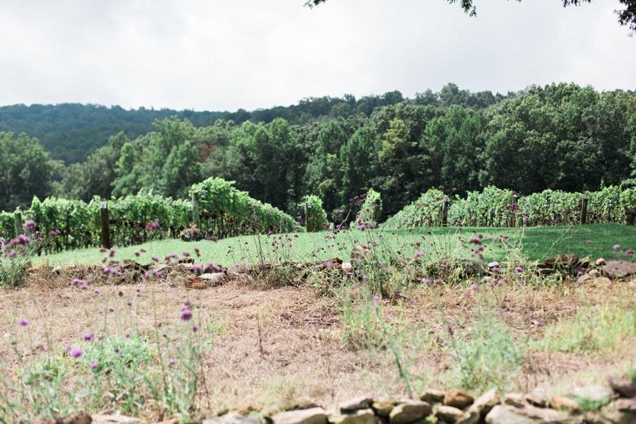 raffaldini vineyard wedding photography