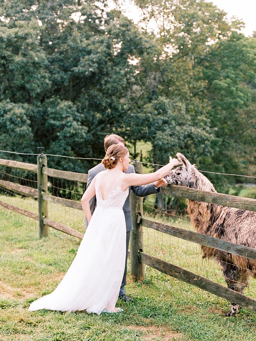 Claxton Farm Fine Art Film Wedding Photography_0011